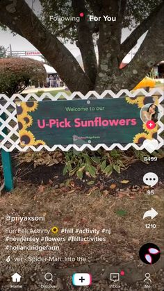 Activities Near Me, Fun Fall Activities, New Jersey, Birthday, Flowers, Birthdays, Royal Icing Flowers, Flower, Dirt Bike Birthday