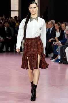 Christian Dior Fall 2015 Ready-to-Wear Fashion Show - Kinga Rajzak (IMG)