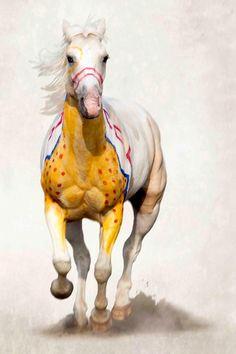Native American War Pony