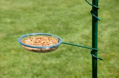 bird seed feeders with tray