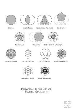 48 Trendy Tattoo Ideas Mandalas Sacred Geometry Flower Of Life Zentangle, Affinity Designer, Flower Of Life, Geometric Shapes, Geometric Animal, Geometric Drawing, Geometric Flower, New Tattoos, Tatoos