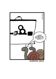 Learning-agile  www.geek-and-poke.com