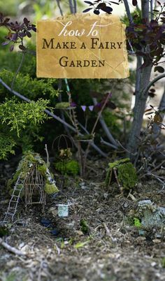 How to make your own enchanted fairy garden- a project for kids and adults!