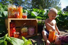 SelvforsyningsCentralen - Fermenterede grøntsager - den skønneste konservering af havens godter!