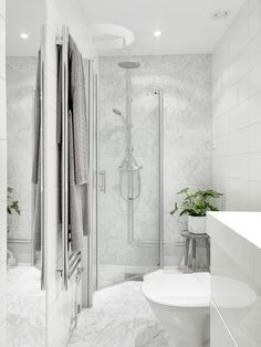 White marble bathroom with glass shower and indoor plant