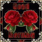 Immagini Buongiorno, Buon pomeriggio, Buona Serata, Buona Notte e Sogni d'oro