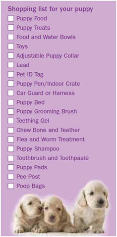 Puppy Shopping List- will need to get stuff.