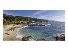 Beach Landscape (Color Photography) Poster - AllPosters.ca