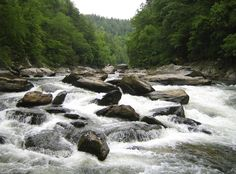 Chatooga River, white water rafting.  Remember Deliverance?