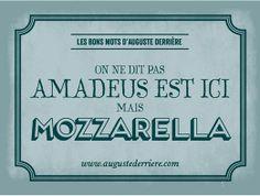 amadeus est ici vs mozzarella