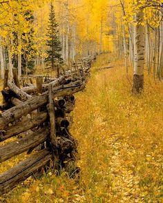 Colorado photo via brandon