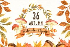 Autumn Leaf Watercolor Clipart - Illustrations
