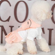 undefined Small Dog Clothes Patterns, Pet Store, Wholesale Clothing, Small Dogs, New Product, Chinese, Snoopy, Teddy Bear, Pets