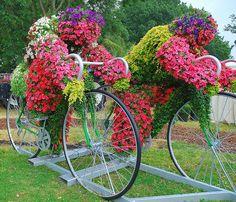 flower riders