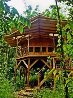 Pays d'Amérique centrale, le Costa Rica est connu pour avoir su préserver la beauté sauvage et originelle de sa faune, de sa flore et de ses paysages à cou