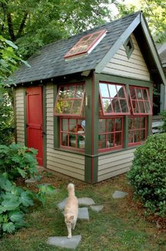 This Cape Cod shed is useable and  charming. I would love it in my garden. Like the cat too.