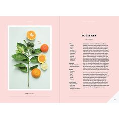 "Citrus Spread from ""Forager: A Subjective Guide to Miami's Edible Plants"" Graphic Design Agency, Graphic Design Layouts, Book Design Layout, Print Layout, Branding Design, Brochure Design, Typography Layout, Graphic Design Typography, Lettering"