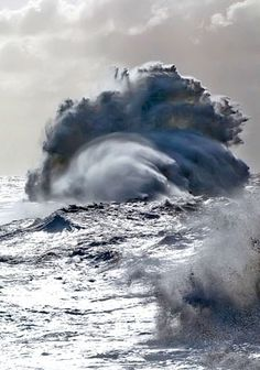 Every wave, regardless of how high and forceful it crests, must eventually collapse within itself. -Stefan Zweig