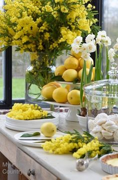 Spring Decor - lemon tart and mimosa to brighten up the winter My French Country Home, French Country Decorating, Decoration Table, Table Centerpieces, Masquerade Centerpieces, Centerpiece Ideas, Wedding Centerpieces, Deco Buffet, Lemon Party