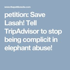 Lasah give rides to tourists all day. And TripAdvisor is sending business to his torturers. signatures on petition) Close To My Heart, Selfish, Destruction, Mother Earth, Trip Advisor, Elephant, Animal, Business, Free