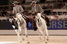Risultati immagini per treccine cavalli dressage