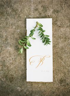Wedding program: http://www.stylemepretty.com/little-black-book-blog/2014/12/22/romantic-belle-meade-plantation-wedding/ | Photography: Brooke Boling - http://www.brookebolingweddings.com/