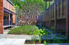 Central courtyard in the Noosville office of leading Noosa Property agency.