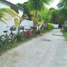 #travel #keywest #traveling #travelgram #bike#keywestflorida #bikes #adventure #trip#summer #florida #tourism #street #bicycle by malaykato