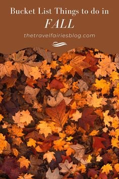 Fall Bucket list | The best   things to do in Autumn | Autumn ideas whether you're at home or traveling |   Fall Bucketlist ideas for families, kids, couples or friends | Things to do   in Autumn in the UK, USA, Europe or Australia #autumn #fall #fallbucketlist   #bucketlistideas #indooractivites #outdooractivites #fallseason #falltravel