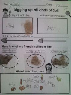 First Grade Fabulous Fish: Soil Explorations