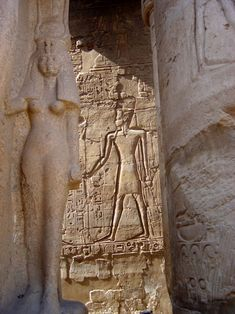 A statue of the Great Royal Wife Nefertari, in the foreground, in front of a wall relief sculpture of her husband, King Rameses II, as a deity. Luxor temple. Thebes, Upper Egypt. 19th dynasty.