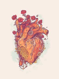 'Sweet Heart' Poster by MathijsVissers Japon Illustration, Heart Illustration, Heart Canvas, Heart Art, Anatomical Heart Drawing, Anatomical Heart Tattoos, Human Anatomy Art, Heart Anatomy Drawing, Illustration Inspiration