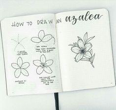 DRAW FLOWER