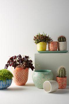 Slide View: 2: Sage Garden Pot
