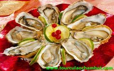Bào Ngư là đặc sản ngon nhất Cù Lao Chàm. Nếu Tham Quan Cù Lao Chàm mà chưa thưởng thức qua thật là phí phạm. http://tourculaochamhot.com/bao-ngu-cu-lao-cham.html