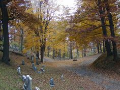 Historic Mt Hope Cemetery, Rochester NY, where he will be laid to rest -  by GraveWalker, via Flickr