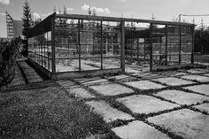 #Apontamentos: Um lugar ao sol - #cadeirões num campo com plantas diversas (erva, mato e algumas árvores); #Ruínas da estrutura metálica de um edifício