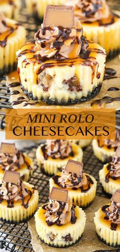 These Mini Rolo Cheesecakes are full of chocolate and caramel! They're so decadent and dreamy, and they're super easy to make. Rolo Cheesecake, Mini Cheesecake Recipes, Cheesecake Bites, Chocolate Cheesecake, Summer Dessert Recipes, Desert Recipes, Delicious Desserts, Holiday Desserts, Best Chocolate Desserts