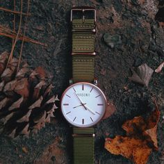 Engaging earth tones in our Catalyst Brushed Bronze watch face & Olive strap.
