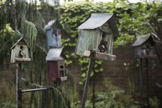 Healing gardens: Tour 'restorative' outdoor spaces (photos)   OregonLive.com