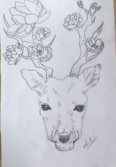 deer drawing easy drawings