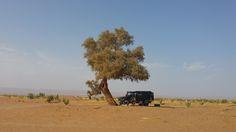 #ani4x4 Morocco #Marruecos #desierto #Sahara #camping Land Rover Defender
