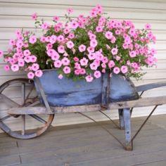 Image result for wheelbarrow garden decor