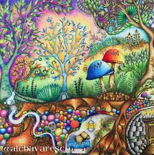 Image result for johanna basford colored
