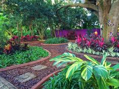 40 Awesome and Cheap Landscaping Ideas: is Too Easy! 40 Awesome and Cheap Landscaping Ideas: Cheap Landscaping Ideas, Florida Landscaping, Hillside Landscaping, Tropical Landscaping, Landscaping With Rocks, Front Yard Landscaping, Landscaping Software, Outdoor Landscaping, Landscaping Contractors