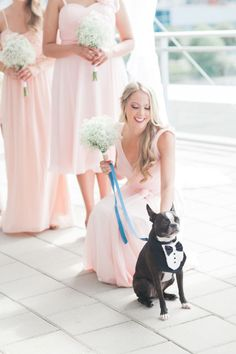 The sweetest pup in a tux! http://www.stylemepretty.com/vault/gallery/39288 | Photography: Simply Sweet Photography - http://www.simplysweetphotographybynomoakisawa.com/