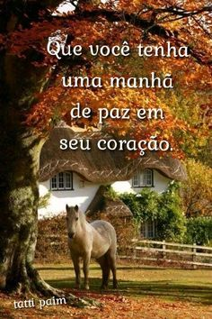 Frases de bom dia com paisagens da roça e campo E Farm, Messages, Movie Posters, Photos Of Good Night, Angel Pictures, Happy Week, Good Night, Poems, Verses