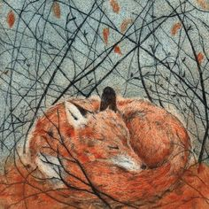 'Resting Fox' by UK printmaker Sarah Bays Art And Illustration, Fuchs Illustration, Fantastic Fox, Fox Art, Woodland Creatures, Red Fox, Albrecht Durer, Conte, Gustav Klimt