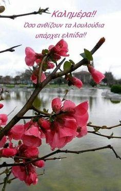 Good Morning, Plants, Painting, Art, Good Day, Craft Art, Bonjour, Painting Art, Bom Dia