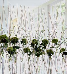Super-talented florist Ken Marten creates a light and bright summer arrangement.